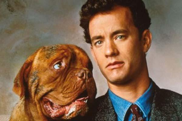 Películas sobre perros que no debes de perderte