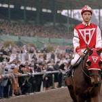 Las mejores películas protagonizadas por caballos
